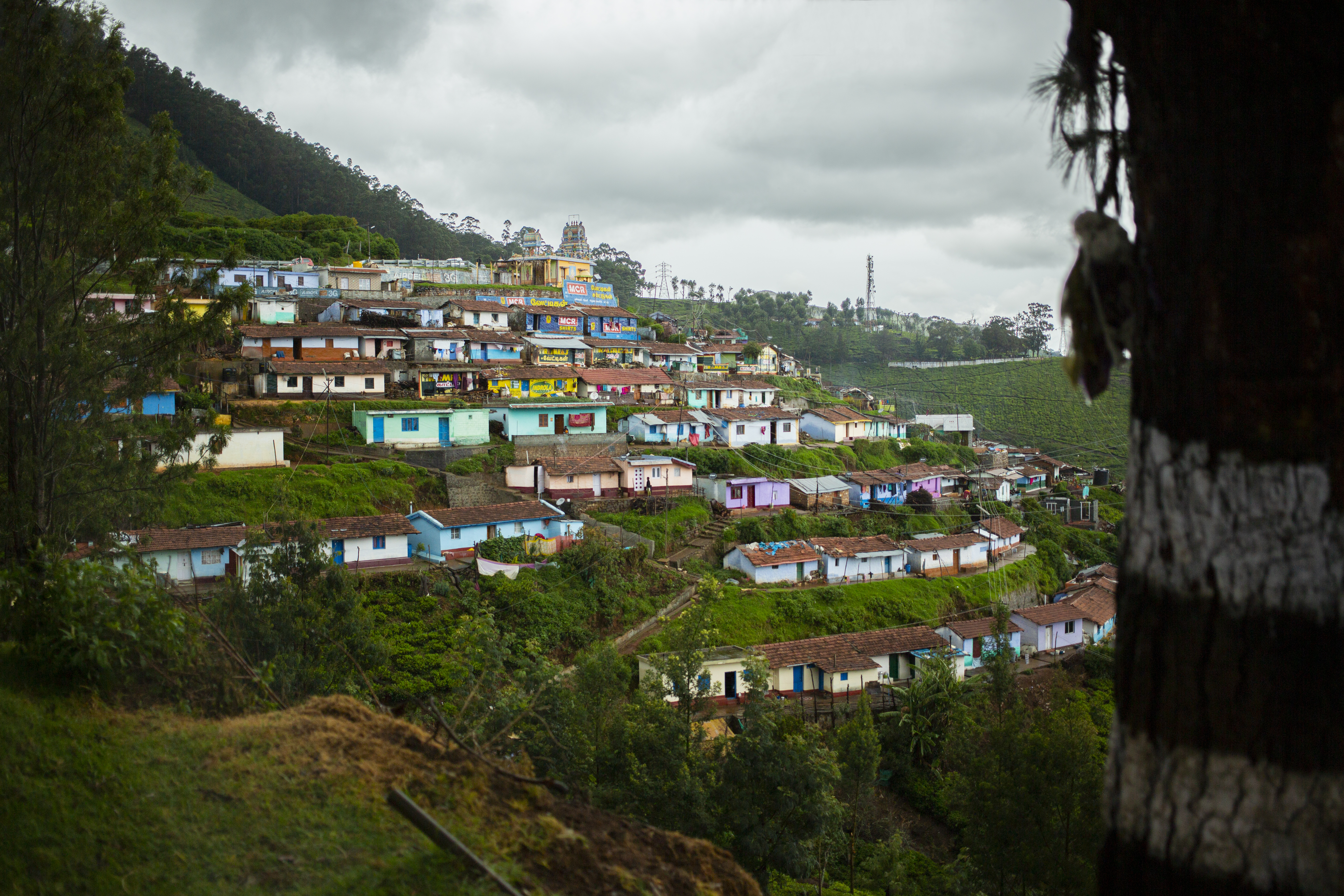 homes in a mountainside